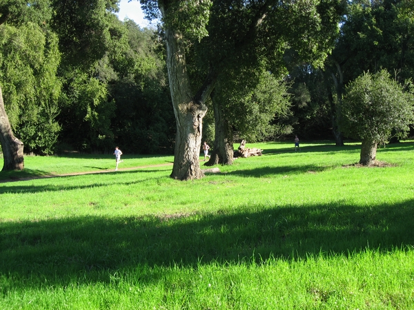 The San Francisco Peninsula and South Bay offer glorious resources for recreation and personal renewal. Rancho San Antonio is a 3800-acre nature preserve with 20+ miles of beautiful trails.